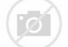 Muslim Women Fashion Clothing