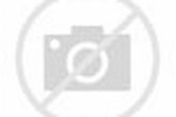 Boy Model Richie Set