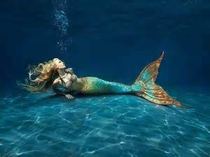 Mermaid  Mermaids Fan Art (31406392)  Fanpop
