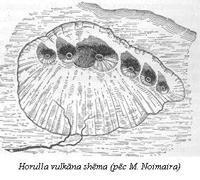 Efuzīvie vulkāni