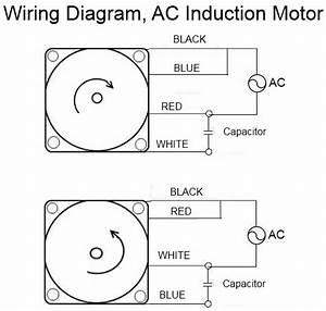 110  220 Volt Induction Motor Wiring Diagram