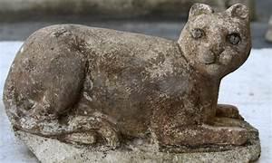 ancient cat bones shake up domestication theory