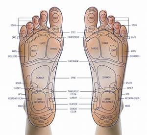 Shiatsu Leg Massager  Small