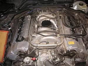 1997 E420 - Vacuum Hose