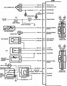 Wiring Diagram Database  1986 Chevy Truck Vacuum Diagram