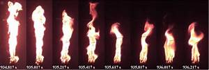Evolution Of The Torch