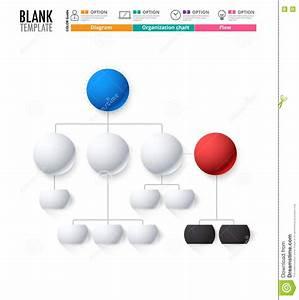 Diagram Template  Organization Chart Template  Flow