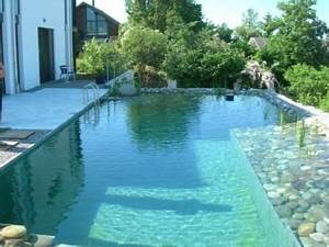 biopiscine piscine naturelle pools pinterest With prix d une piscine naturelle