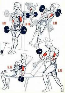 Weight Lifting Percentage Chart Crossfit Weight Lifting Max Percentage Chart Came In Handy Last