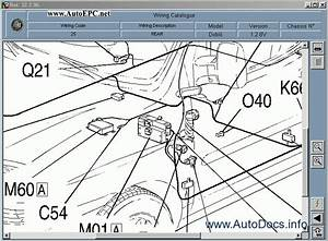 Fiat Doblo  U0026 Doblo Cargo Repair Manual Order  U0026 Download