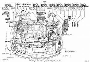 Toyota Mark X Electrical Wiring Diagram New Toyota Crown