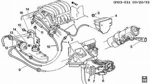 Audio Wiring Diagram 2004 Pontiac Gto