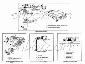 2003 Jeep Grand Cherokee Evap System Diagram