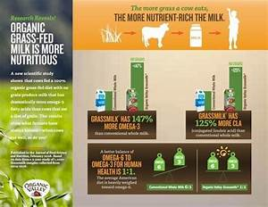 Is Milk Bad For You  A Guide To Healthy Dairy Products