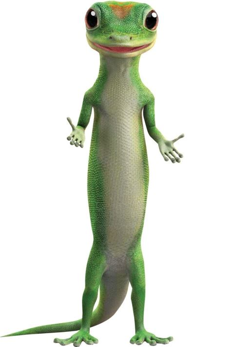 The amount will vary by insurer and is usually around 10% of your personal property liability limit. How Big Data Spawned the Geico Gecko   Car insurance ...