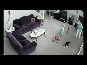 Need A Babysitter Cat Defends Baby From Babysitter Youtube