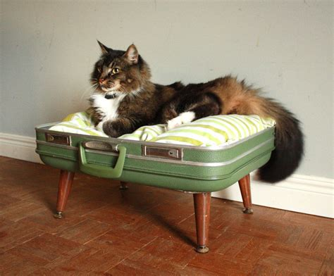 Cozy Cargo Suitcase Pet Bed Green And Brown Upcycled