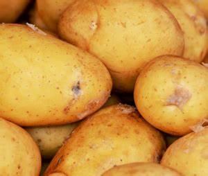 Kartoffeln Lagern Ohne Keller : kartoffellager im dunkelheit ~ Frokenaadalensverden.com Haus und Dekorationen