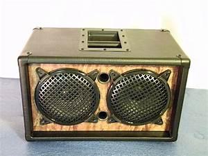 Earcandy Bailey 2x8 Guitar Amp Speaker Cab Cabinet Black
