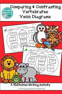 First  U0026 Second Grade Venn Diagrams To Compare And Contrast