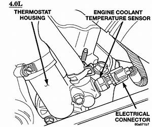 Jeep Tj Sport 2003  Where Is The Engine Coolant