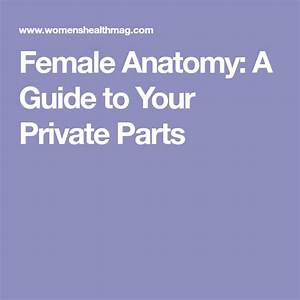 Your Private Parts  A Lesson In Female Anatomy  With