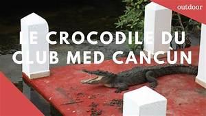 Rencontre Sm Club : crocodile club med canc n youtube ~ Medecine-chirurgie-esthetiques.com Avis de Voitures