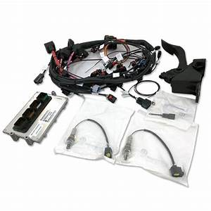 Hemi Stand Alone Wiring Harness