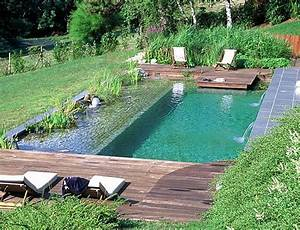 25 best ideas about pool images on pinterest swimming With prix d une piscine naturelle
