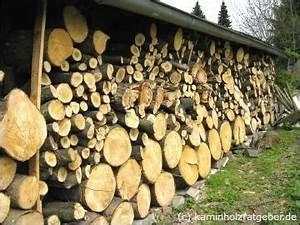 Brennholz Richtig Lagern : brennholz scheitholz richtig lagern wie lagert man ~ Watch28wear.com Haus und Dekorationen