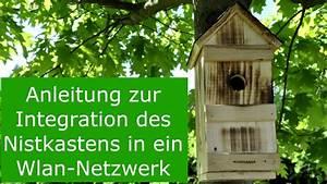 Nistkasten Kaufen Behindertenwerkstatt : nistkasten mit wlan kamera heimnetzwerk per app youtube ~ Watch28wear.com Haus und Dekorationen