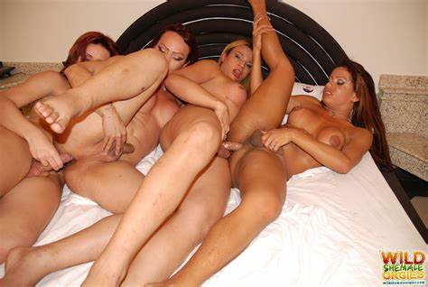 Orgy With A Shemale