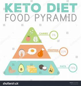 Atkins Diet For Beginner  Keto Diet Food Diagram