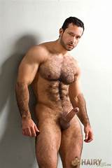Gay hairy bear movie