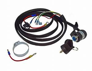 Wiring Harness W  Keyswitch  U0026 Mount For Hf Predator 670cc V