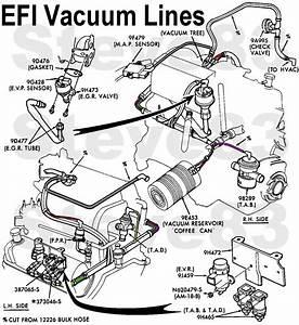 351w  I Need Vacuum Line Diagram Please Help 1989 F