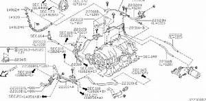 Infiniti M45 Hose Vacuum Control B  Fitting