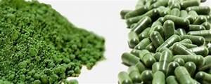 Plante Detoxifiante : alge marine propriet i detoxifiante i re ete la taifas ~ Melissatoandfro.com Idées de Décoration