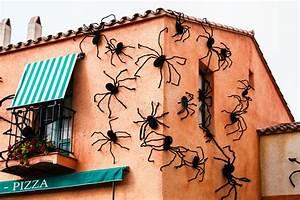Viele Spinnen Im Haus : das haus auf dem viele spinnen sitzen sie das zeichen ~ Watch28wear.com Haus und Dekorationen
