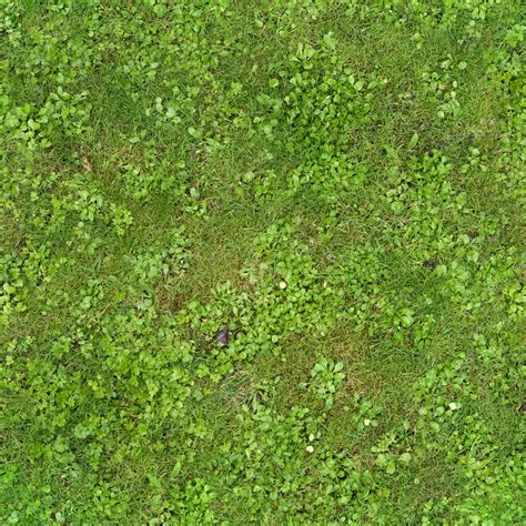Browsing Seamless Grass Category Good Textures