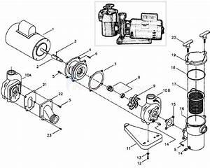 Aqua Flo A Series Pump Parts