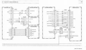 Peace Motorsport 49cc Wiring Diagram