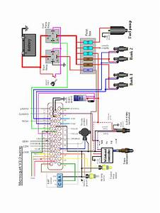 Megasquirt Support Forum  Msextra   U2022 Wiring Diagram  View Topic