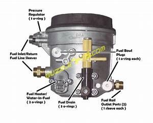 Fuel Bowl    Water Separator
