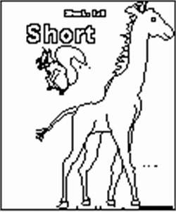 Animal Opposites  A Coloring Book To Print