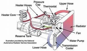 Vehicle Engine Cooling System