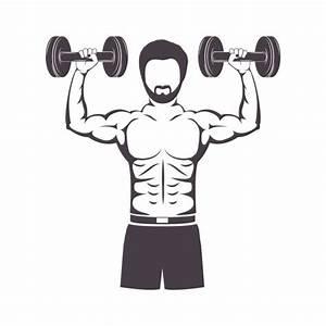 Muscular Stock Vectors  Royalty Free Muscular