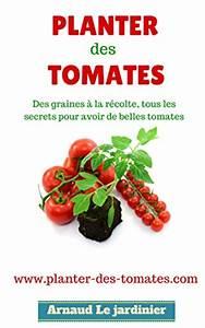 Planter Des Graines De Tomates : comment faire comment planter les tomates howto illustr s ~ Dailycaller-alerts.com Idées de Décoration