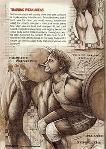 Diet Chart For Lean Muscle Gain 585 Best Arnold Schwarzenegger Bodybuilding Images On