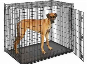 60 inch dog crate review best price and comparison 2018 With best price on dog crates